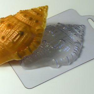 Морская ракушка малая