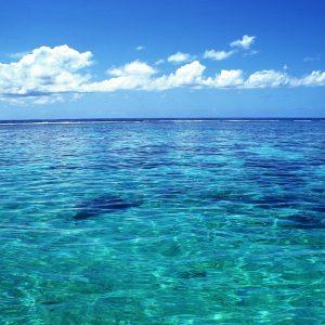 Свежесть океана