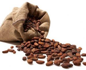 Какао масло нерафинированное, 100 гр.