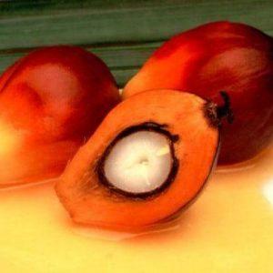 Пальмоядровое масло рафинированное, 100 гр.