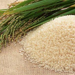 Рисовых отрубей масло рафинированное, 50 мл