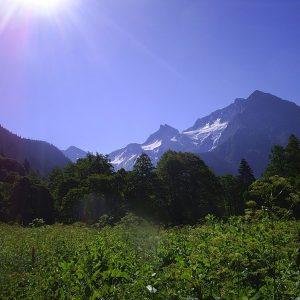 Альпийская свежесть
