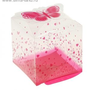 Коробка пластик Куб. Бабочки